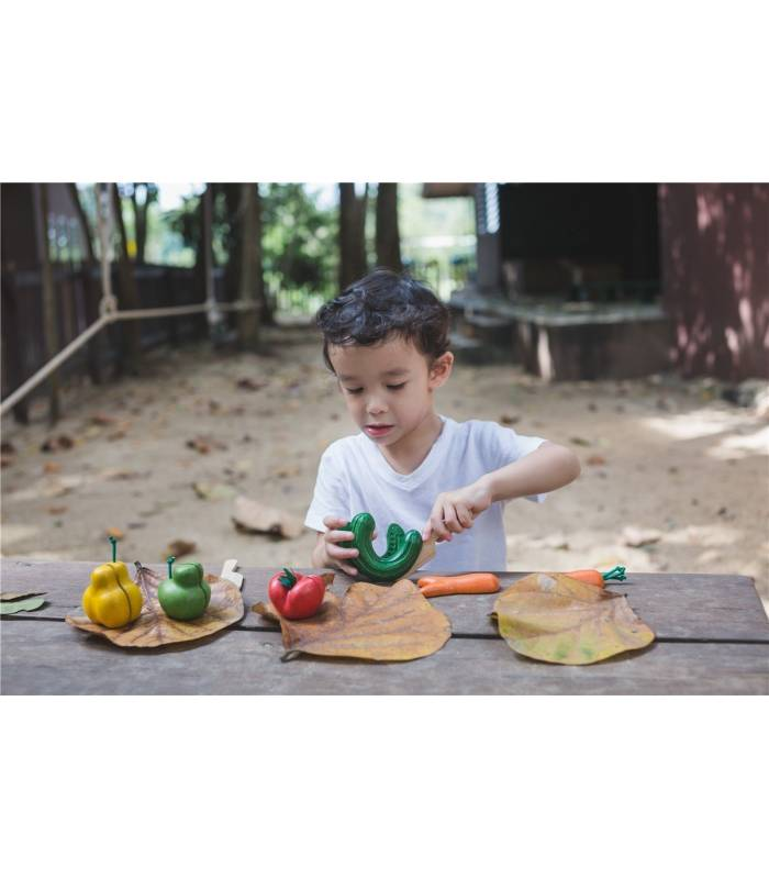 PLAN TOYS IMPERFECT FRUITS AND VEGETABLES